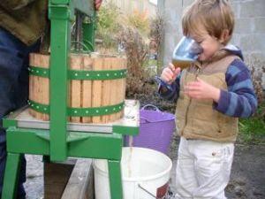 Fresh apple juice!